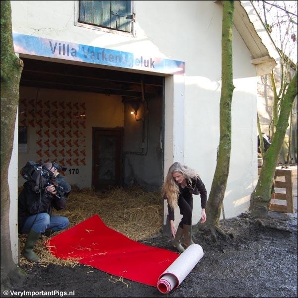 Dafne Westerhof rolt de rode loper uit voor fokzeug La Mama