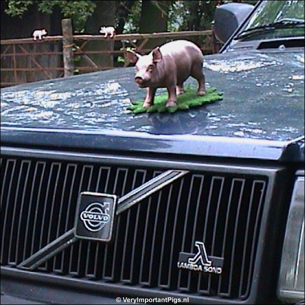 de Varkens Volvo van Het Beloofde Varkensland